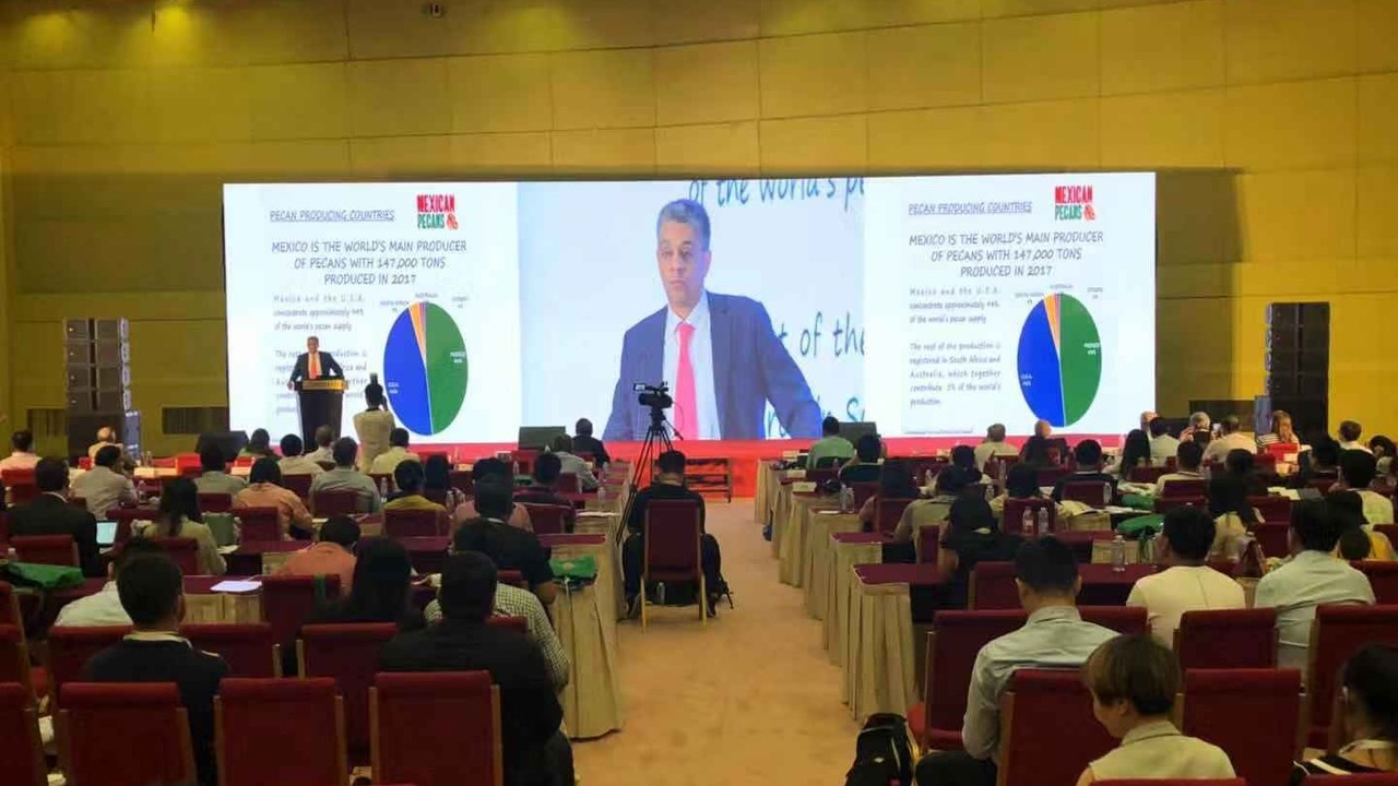Carlos Aldeco presentation at China International Tree Nuts conference