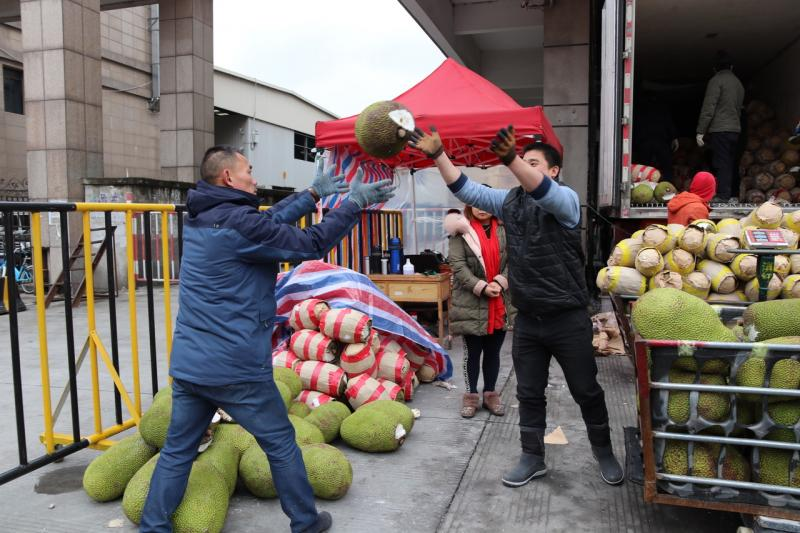 Jiaxing Fruit Market Becomes a Trading Center for Jackfruit | China