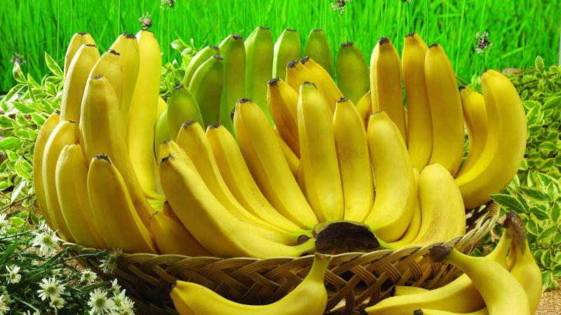 China Grants Export Permission to 28 Philippine Fruit Companies