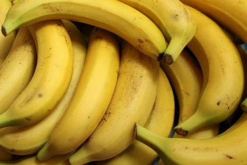 Cambodian Bananas Achieve Permission for Import into China | China