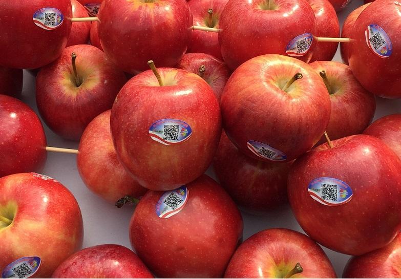Washington Apples Benefit from Alibaba Traceability Plan