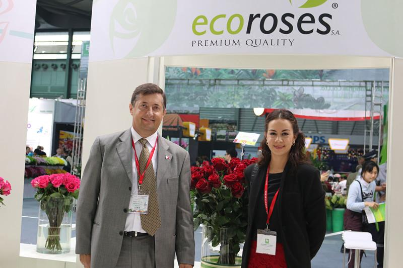 Ecuadorian Roses in China
