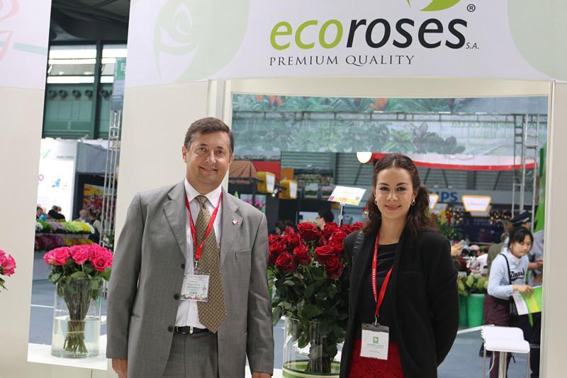 Ecuadorian Roses in China