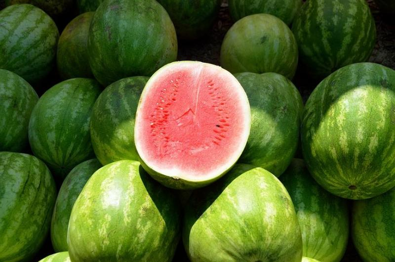Myanmar Watermelon Nabs China S Off Season Market Share Produce Report