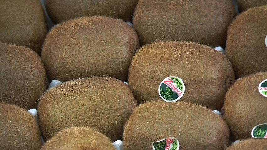 Zespri Temporarily Stops Shipping Kiwifruit to China