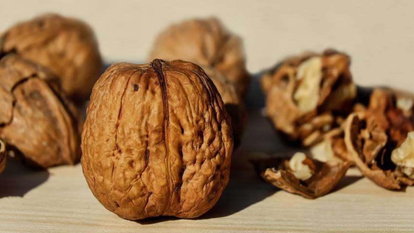 Chilean Walnuts vs Californian Walnuts – Price & Quality Matter