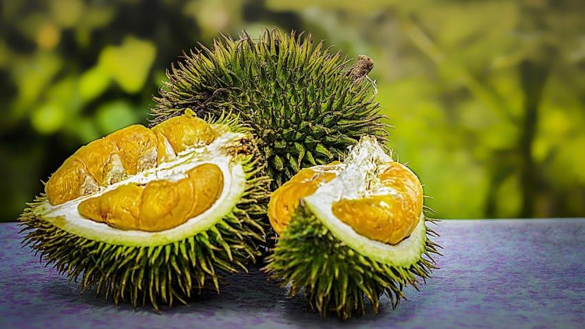 durian home delivery
