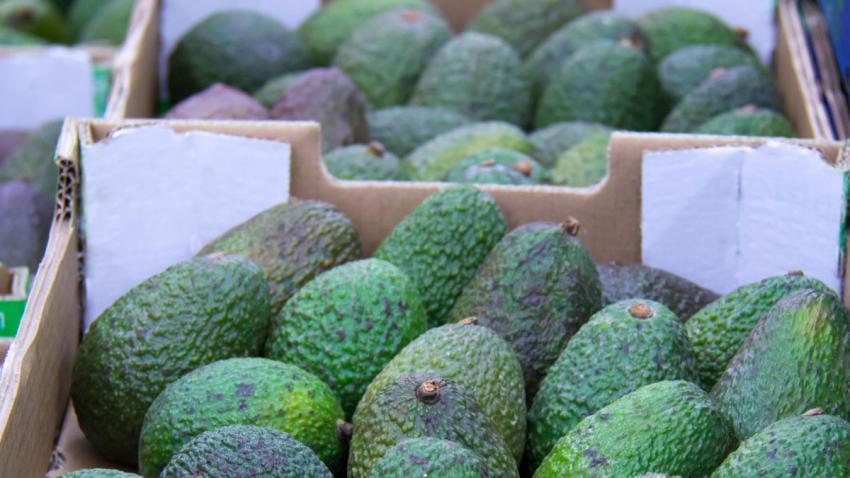 China Wholesale Market Report: Avocados, Week 13