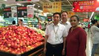 south african royal gala apples in china